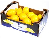 Horeca Select Citrony Primofiori 4/5 I. čerstvé 1x2,3kg box