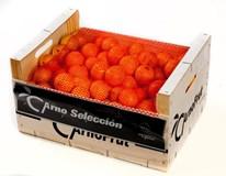 Mandarinky Clementine 3/4 čerstvé 1x10kg