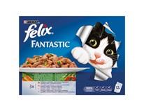 Purina Felix Fantastic kapsička se zeleninou pro kočky 12x100g