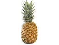 Ananas Sweet Gold 1000g+ čerstvý 1x1ks