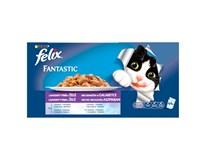 Felix Fantastic Masový výběr pro kočky 44x100g