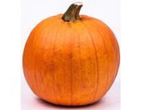 Dýně Halloween čerstvá váž. 1x cca 1-3kg