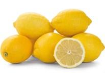 Citrony bez chemického ošetření 3/4 I. čerstvé 1x5kg