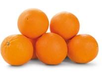 Pomeranče Lanelate 4/5 skládané čerstvé 1x9kg karton