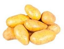 Brambory rané žluté prané 40/60 čerstvé 1x2,5kg