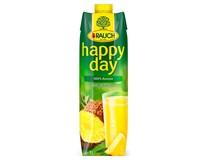 Rauch Happy Day Ananas 100% džus 6x1L