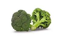 Brokolice čerstvá 10x500g