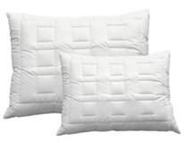 Polštář Aloe Vera 70x90cm 1ks