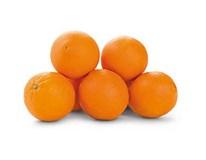 Pomeranče Navel Late Bolo 2/4 I. 4 čerstvé 1x4kg