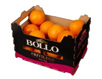 Pomeranče Lane Bollo 2/4 I. čerstvé 1x4kg