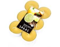 Svíčky čajové maxi Spaas citrus 12ks