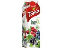 Toma Lesní ovoce 32% nektar 12x1L