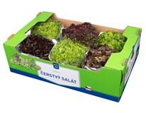 Metro Chef Salát mix 1200g+ I. CZ čerstvý 6x1ks karton
