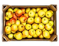 Jablka Jonagored 65+ I. čerstvá 1x13kg