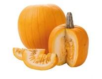 Dýně Halloween CZ čerstvá váž. 1x cca 1kg+