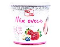Vitacup Ovoce Lyofilizované mix 1x35g