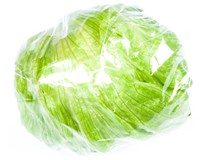 Salát ledový 350+ I. ES čerstvý 1x1ks