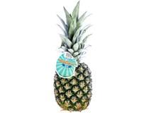 Ananas Extra Sweet 1600+ čerstvý 1x5ks