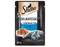 Sheba kapsička pro kočky tuňák 24x85g