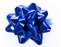Rozeta Flexio 6,5cm modrá 1ks