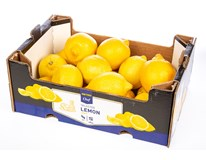 Citrony Primofio 4/5 I. čerstvé 1x2,3kg