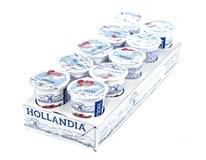 Hollandia Jogurt selský malina 10x200g