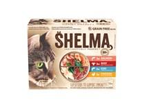 Shelma Kapsička pro kočky maso/ryba 12x85g