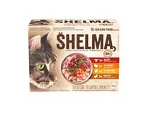 Shelma Kapsička pro kočky 4 druhy masa 12x85g