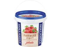 Hollandia Jogurt min 3% jahoda chlaz. 1x1kg