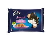 Felix Fantastic Junior Kapsy pro kočky kuře/losos 4x85g