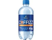 Coffizz Energetický nápoj passion fruit 6x500ml