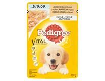 Pedigree Junior kuře pro psy 24x100g