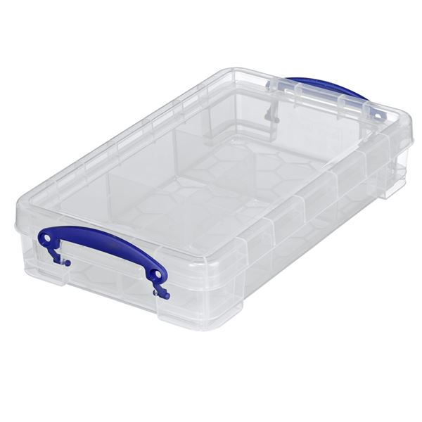 Really Useful Products Aufbewahrungsbox 2,5 l + Divider