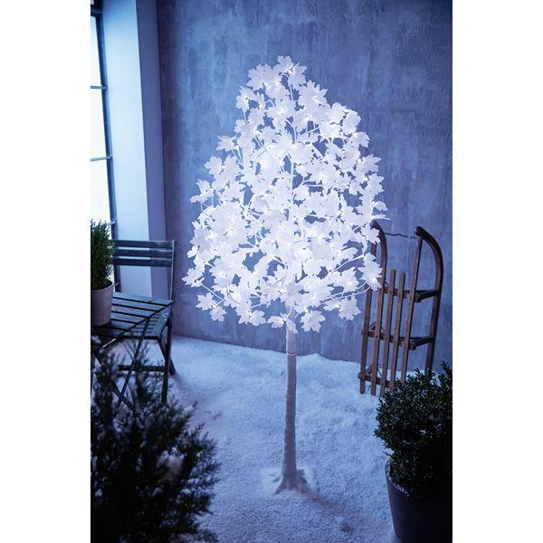 Tarrington House LED-Ahornbaum