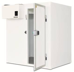 Minicella frigorifera