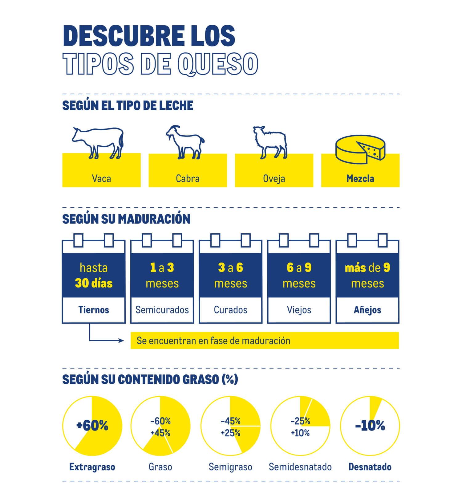 Tipos de quesos - Infografía