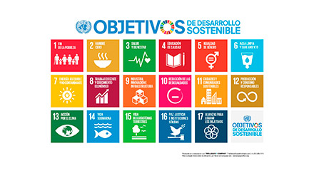 objetivos desarrollo sostenible makro