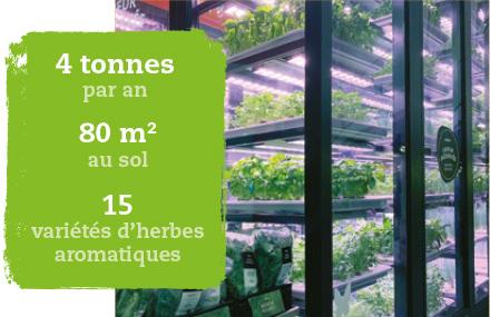 METRO soutient les nouveaux modes d'agriculture
