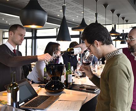 Dégustation de vin - St Emilion