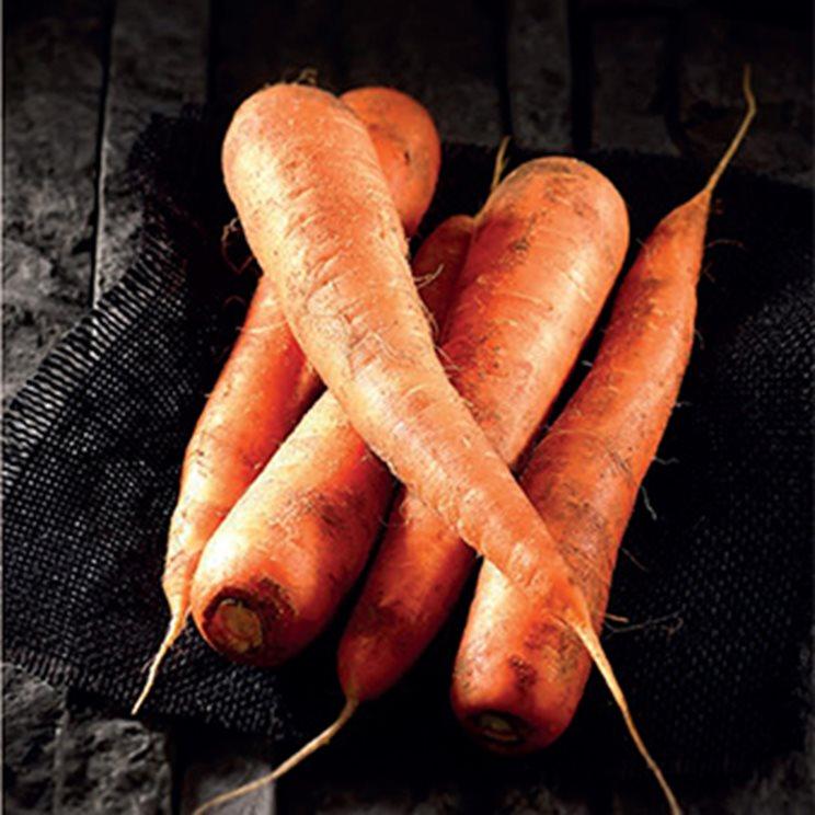 La carotte des sables