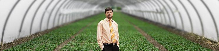 Agrofoker
