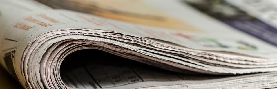 Articole de presa