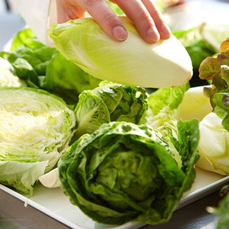 Lisnato povrće - salate