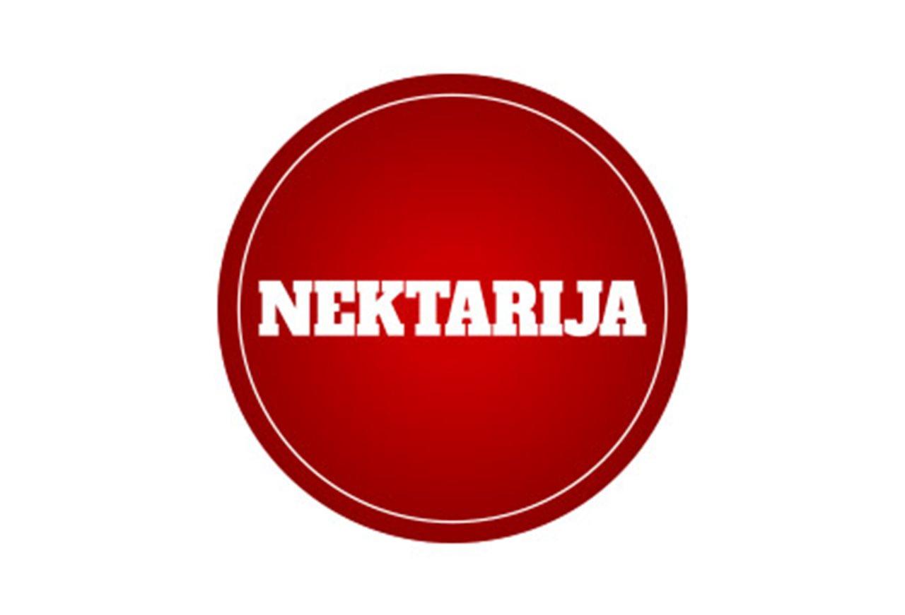 STR Nektarija logo