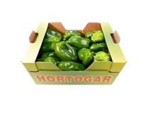 Paprika zelená 80+ I. čerst. 1x5 kg  kartón