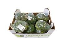Brokolica čerstvá 10x500 g fólia