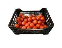 Rajčiny červené MM/M 47+ I. čerstvé 1x6 kg kartón