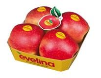 Jablká Evelina 80+ čerstvé 1x4 ks tácka