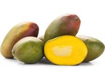 Mango Kent hard 350g+ čerstvé 1x1 ks