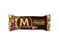 Algida Magnum Praliné nanuk mraz. 20x90 ml